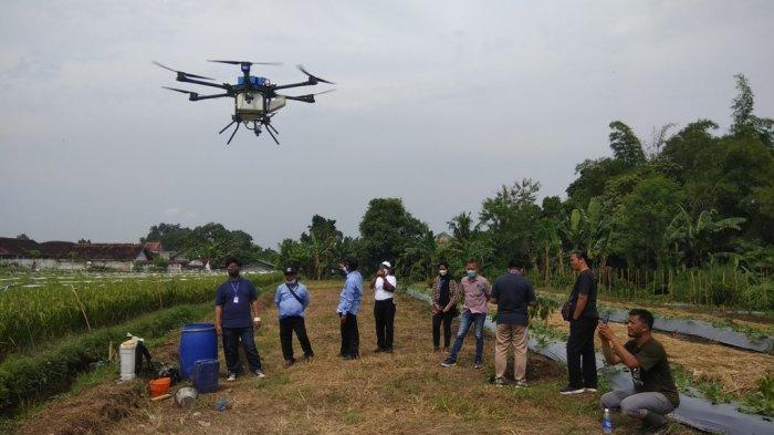 Drone Sprayer Bisa Semprot Pestisida di Lahan 10 Hektare per Hari