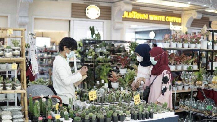 Pertemukan Sesama Online Plant Seller dan Pembeli di Era Pandemi, Ngijo Gelar Plant Festival