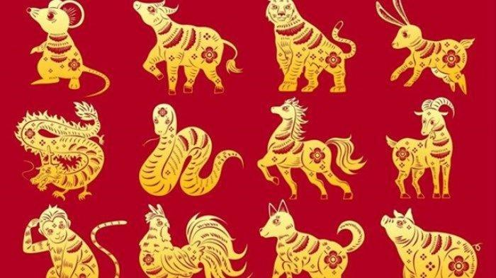 4 Shio yang Nasibnya Kurang Hoki Minggu 11 April 2021, Ada yang Merasa Dikhianati