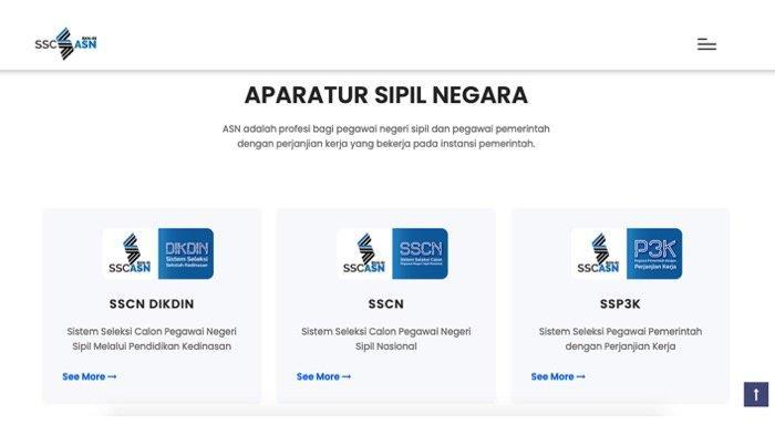 BKN Pastikan Hanya Satu Portal Pendaftaran CPNS/PPPK 2021 via SSCASN Sscasn.bkn.go.id