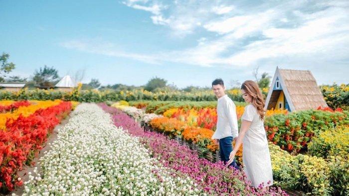 Deretan Wisata Jogja Wajib di Kunjungi Desember Ini, Dari Wisata Mesin Waktu Hingga Romantic Garden