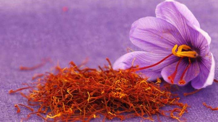 Mengenal Saffron, Bumbu Masak yang Harganya Rp11 Juta