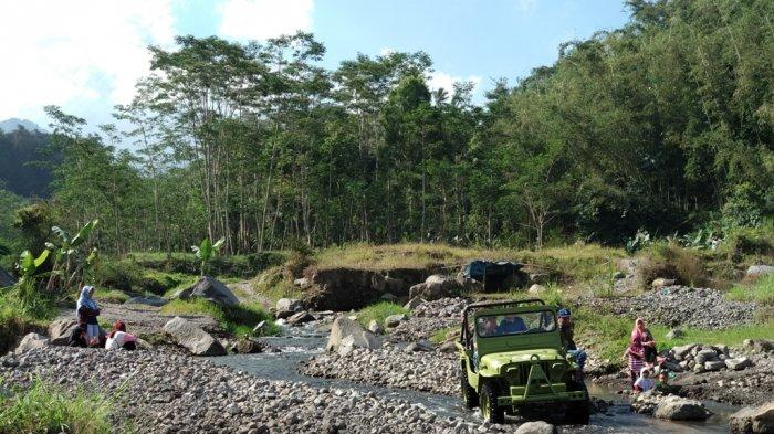 Disebut Kikis Hutan Lereng Merapi, Komunitas Lava Tour Beri Klarifikasi