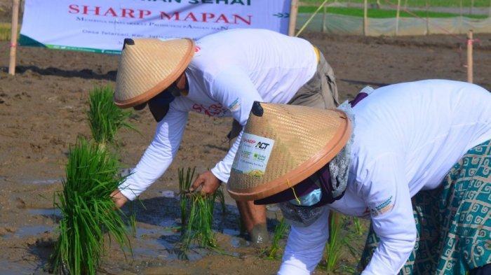 Sharp Tingkatkan Kesejahteraan Petani di Masa Pandemi Melalui Program 'SHARP MAPAN'