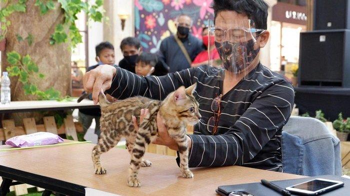 Gelar SCH Pet Expo, Sleman City Hall Pamerkan Puluhan Jenis Hewan dari 20 Komunitas
