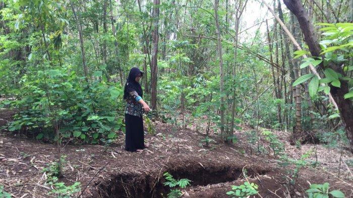 Tanah Ambles Ancam 21 KK di Panggang, Gunungkidul