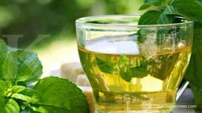 Obat-obatan Herbal yang Bermanfaat Membersihkan Paru-paru dan Melegakan Pernapasan