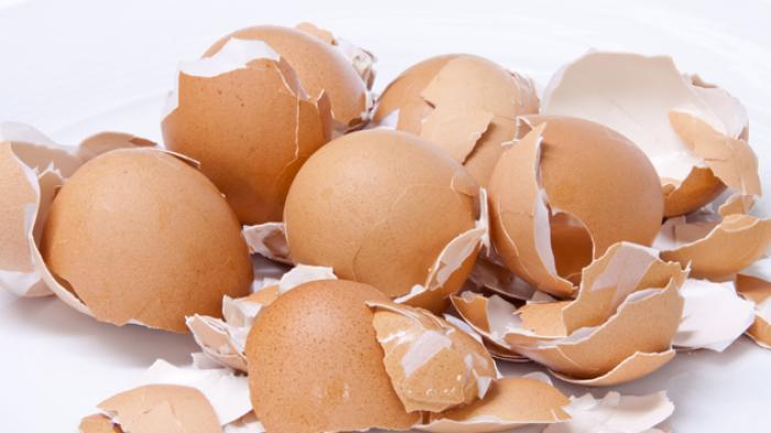 5 Manfaat Kulit Telur yang Tersembunyi