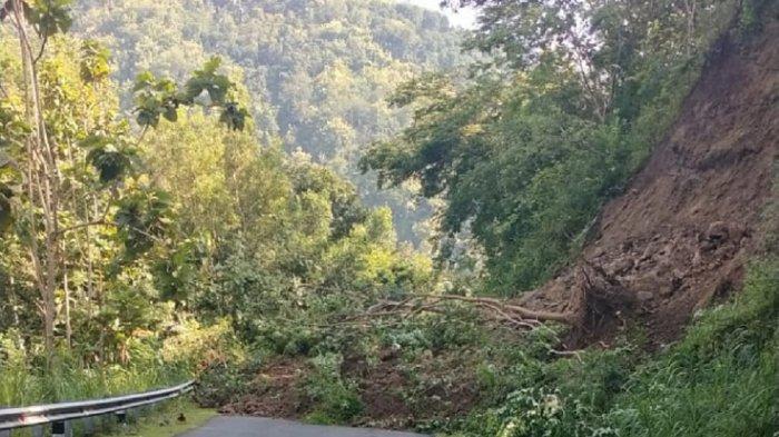 Terdampak Hujan Deras, Tebing Setinggi 20 Meter di Jalan Nanggulan-Kaligesing Kulon Progo Longsor