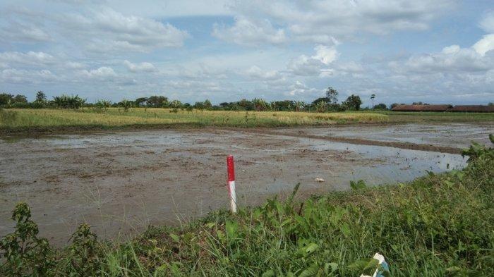 Tol Yogya-Solo : Pembayaran UGR 5 Bidang Tanah Kas Desa di Mendak Klaten Sudah Disetujui Gubernur