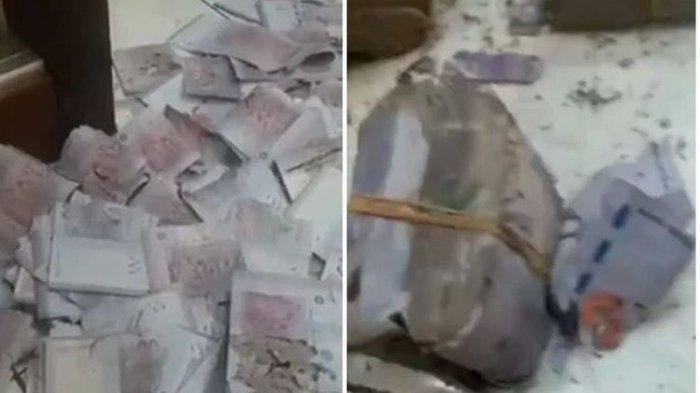 Disimpan di Kaleng, Uang Gepokan Milik Nenek Hancur Dimakan Serangga