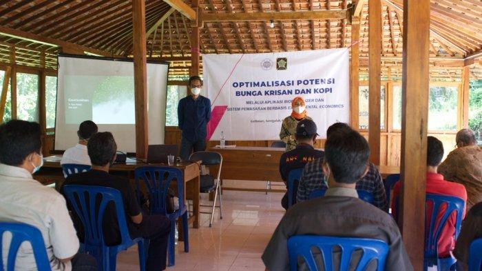 Bantu Optimalisasi Potensi Bunga Krisan, UGM Beri Pendampingan Petani di Kulon Progo