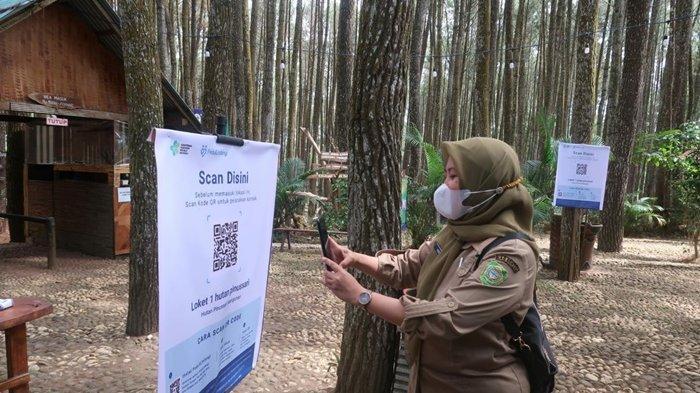 Uji Coba Wisata di Pinus Sari Bantul Terkendala Akses Sinyal untuk Proses Scan QR Code