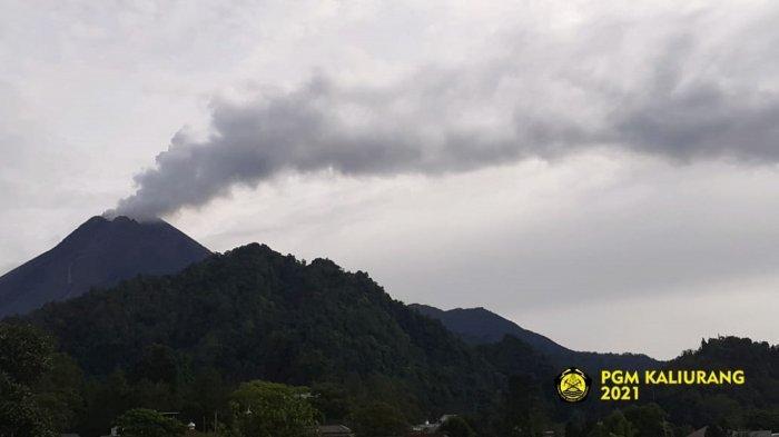 UPDATE Gunung Merapi : Asap Sulfatara Keluar Berintensitas Tebal dengan Tinggi 400 M Pagi Ini