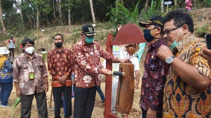 Pemkab Kulon Progo Bersama KUB Tiwi Manunggal Kembangkan Agrowisata Terpadu