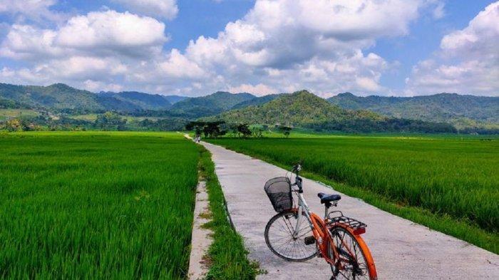 Wisata Gowes Nikmati Hamparan Sawah di Pronosutan View Kulon Progo