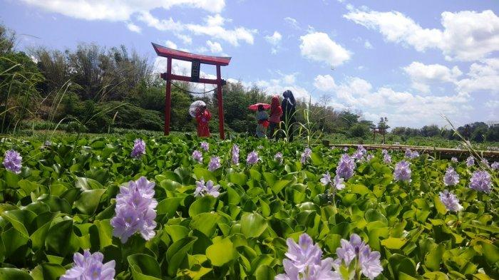 Kalinampu Natural Park, Wisata Selfie ala Jepang di Pinggiran Sungai Opak