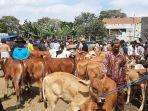 aktivitas-jual-beli-di-pasar-hewan-muntilan-meningkat-menjelang-lebaran-kurban.jpg