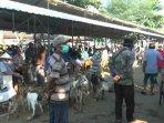 aktivitas-perdagangan-di-pasar-hewan-siyono-harjo-1.jpg