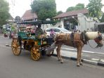 andong-kendaraan-wisata-tradisional-yogyakarta-yang-ada-di-jalan-malioboro_20171214_223931.jpg