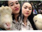 aura-kasih-selfie-dengan-kambing-1_20171113_144522.jpg