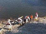 breaking-news-tak-pulang-karena-pikun-jasad-seorang-kakek-ditemukan-mengapung-di-sungai-progo.jpg