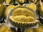 buah-durian_2311_20171123_160229.jpg