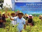 bupati-sleman-sri-purnomo-bersama-dengan-gubernur-bank-indonesia-melaksanakan-panen-cabai-perdana.jpg
