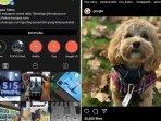cara-mengaktifkan-mode-gelap-di-instagram-yang-kini-resmi-hadir-bagi-pengguna-ios-dan-android.jpg