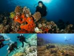 colase-diving_20170201_160855.jpg