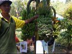 festival-pisang-mangunan_20180502_114351.jpg