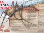 grafis-ilustrasi-demam-berdarah-dengue.jpg