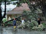 hujan-deras-melanda-di-yogyakarta-pohon-sawo-kecik-di-sisi-timur-bangsal-kepatihan-tumbang.jpg