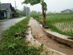 hujan-lebat-di-kulon-progo-bagian-utara-saluran-irigasi-sampai-meluap.jpg