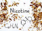 ilustrasi-nikotin.jpg