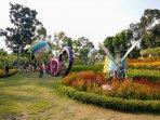 indahnya-warna-warni-bunga-di-alamanda-jogja-flower-garden-turi.jpg