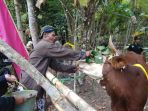 inilah-guyangan-rajakaya-ritual-unik-mendoakan-hewan-peliharaan-ala-masyarakat-pokoh-2_20180905_182014.jpg