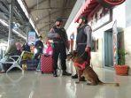 k9-ikut-amankan-stasiun-yogyakarta-selama-libur-natal-dan-tahun-baru.jpg