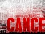 kanker_0106_20150601_105953.jpg