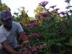 kembangkan-bunga-kertas-sebagai-spot-selfie-rubiyanto-punya-misi-kurangi-pengangguran_20180506_200718.jpg