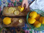 khasiat-lemon-bagi-imunitas-tubuh.jpg