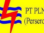 logo-pln_2812_20171228_181418.jpg