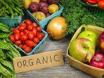 makanan-organik_20180208_145736.jpg