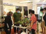 malioboro-mall-menggelar-pameran-bertema-tanaman-house-plants-expo-2.jpg