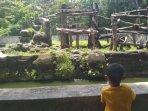 pengunjung-gl-zoo-capai-1500-di-masa-libur-panjang-akhir-pekan.jpg