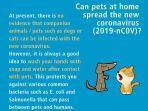 penjelasan-dan-fakta-terkait-virus-corona-yang-menyerang-kucing-dan-anjing.jpg