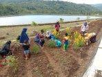 pertanian-berbasis-kawasan-agrowisata-terus-dikembangkan-di-kulon-progo.jpg