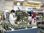 pertemukan-sesama-online-plant-seller-dan-pembeli-di-era-pandemi-ngijo-gelar-plant-festival.jpg
