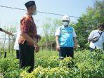 pln-program-electrifying-agriculture-04092021.jpg