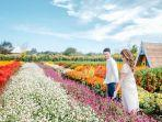 romantic-garden-3.jpg